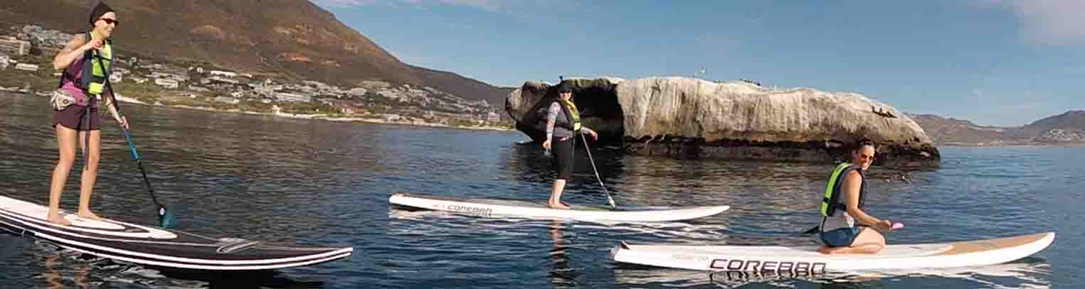 Stand-up Paddle Boarding Penguin Experience