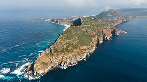 Full Day Peninsular Tour including Free Entry to Cape Point Nature Reserve
