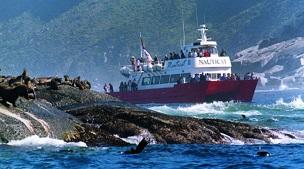 Nauticat Charters Seal Island Cruise
